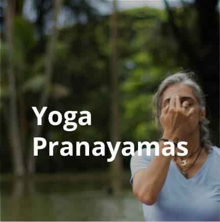 yoga-pranayamas